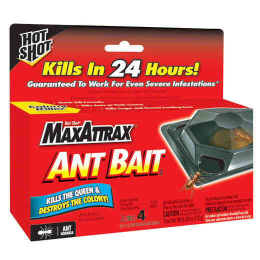 Insect Traps & Baits