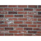 Z-Brick Inca 2-1/4 In. x 8 In. Facing Brick Image 1